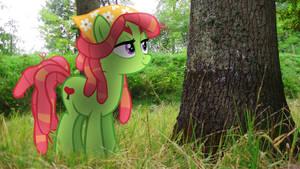 [MLP en vrai] Tree Hugger by VBASTV