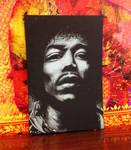 Jimi Hendrix by teedark