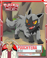 Pokemon - Poochyena by PokemonDexterProject