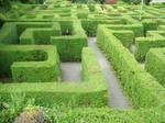 maze stock2