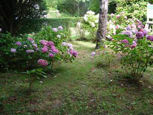 garden stock