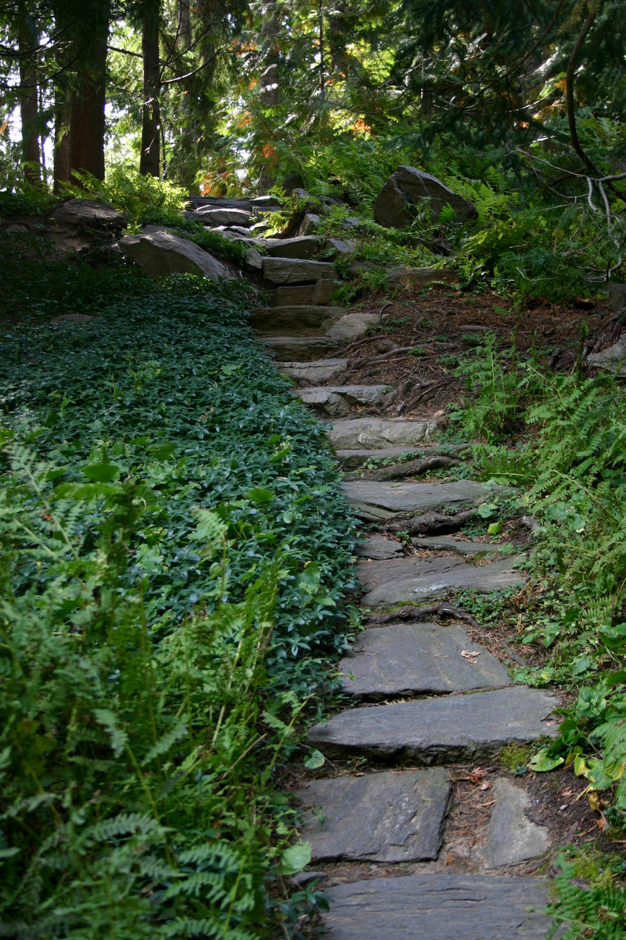 Paintings Of Cobblestone Paths : Stone path by foxstox on deviantart