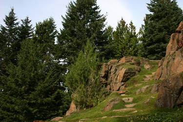 Enchanted Hill