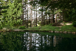 Hidden Pool 2 by FoxStox