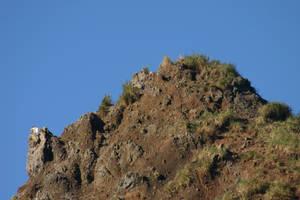 Haystack Rock Tiptop by FoxStox