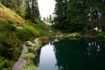 Ohme Garden Pond 2