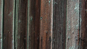 Old Wood Siding Texture