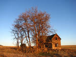 Abandoned Farmhouse 2