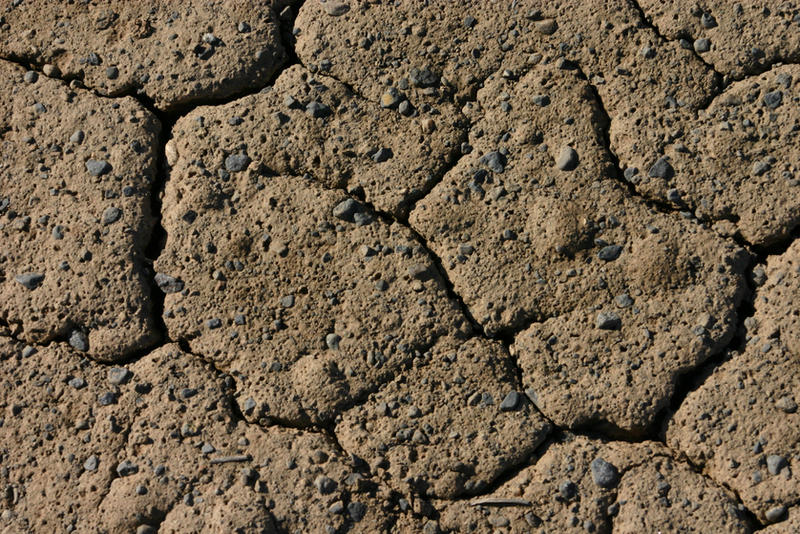 Cracked Mud with Rocks