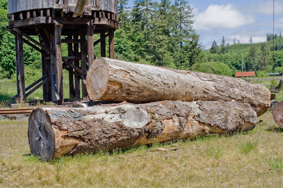 Big Wood