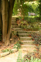 Chalice Well Steps 1 by FoxStox