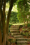 Chalice Well Steps 2