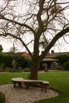 Chalice Well Garden Bench