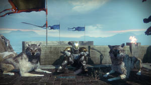 Welcome to Destiny: Rise of Iron!