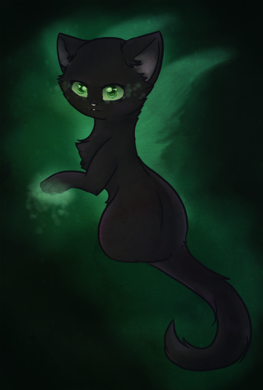Warriors Cats Hollyleaf