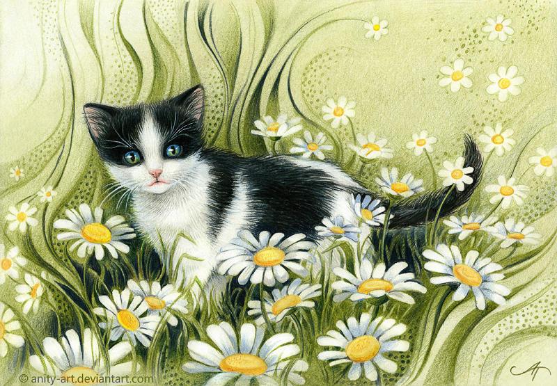 Summer kitten by Anity-art