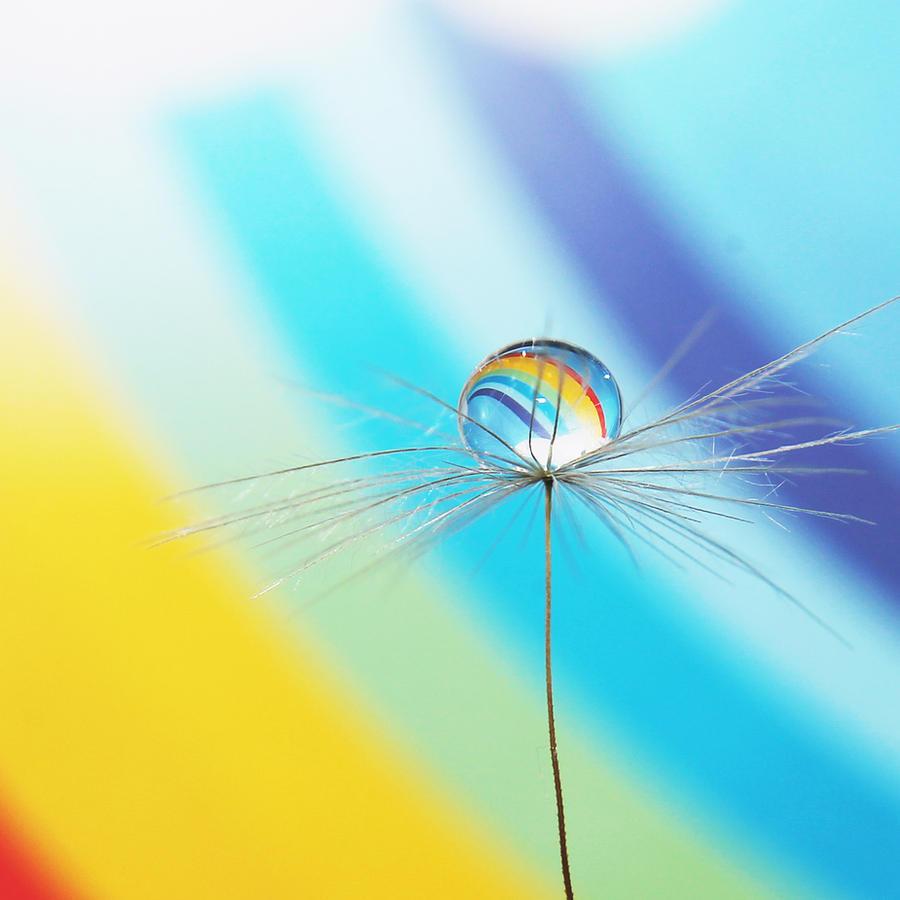 Little Rainbow by Kara-a