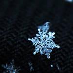 Little Snowflake II.