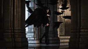 Raven McCrow - Mistress of the dark birds by Edheldil3D