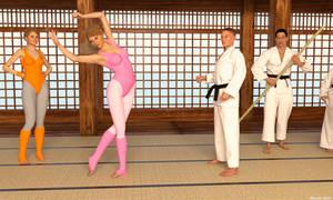 11 - Prima KungFu Ballerina by Edheldil3D