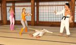 19 - Prima KungFu Ballerina