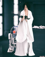 Leia and R2 by Edheldil3D