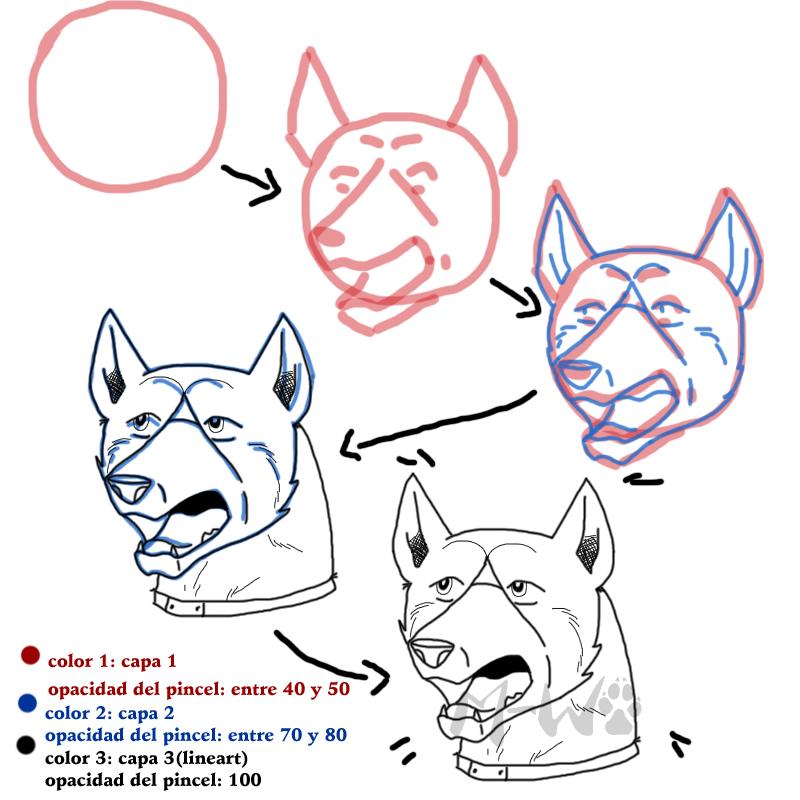 Galeria de yoru95 ^^ - Página 2 Ginga_head_tutorial_by_mitsuki_wolf-d4r64x1