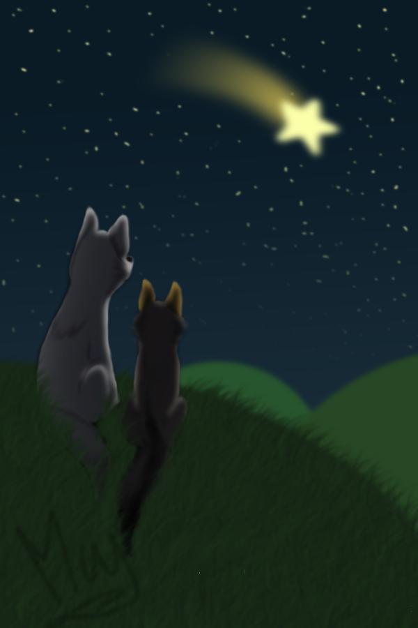 Artista de Devian-Art: Mitsuki-Wolf. *w* - Página 2 Shooting_star_by_mitsuki_wolf-d5vi52x