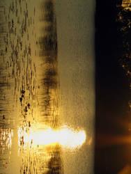 Elements in Harmony by CanoeGuru