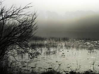 Misty Morning II by CanoeGuru