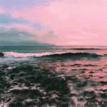 Sea study 2
