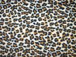 Fabric leopard