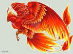 -C- Phoenix