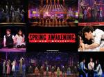 Spring Awakening Wallpaper