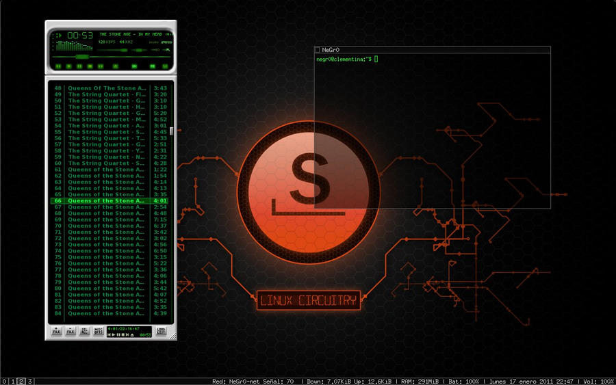 Slackware 13.1 + wmii by ~tubbylandia on deviantART