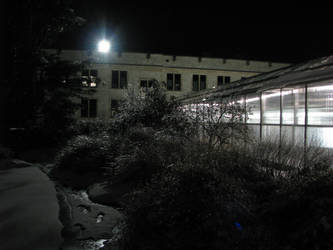 The Greenhouses at Night
