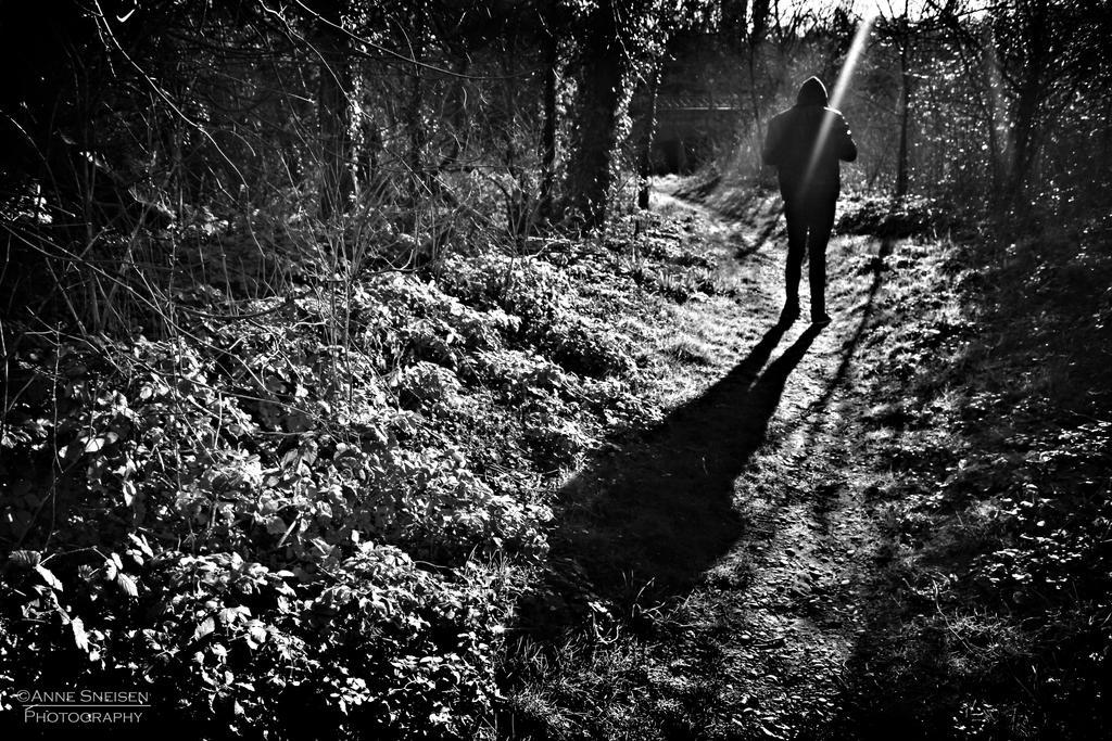 Wanderer by annesneisen