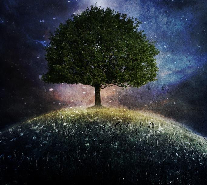 l'arbre de vie by PlacidAnemia