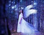 The Angel Queen