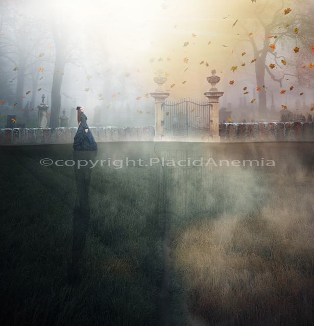 End of Summer by PlacidAnemia