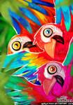 Parrots Fiesta!