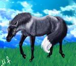 Silver Fox-Horse