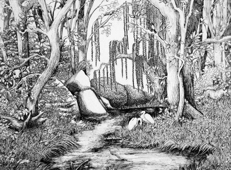 forest scenery drawing the image kid