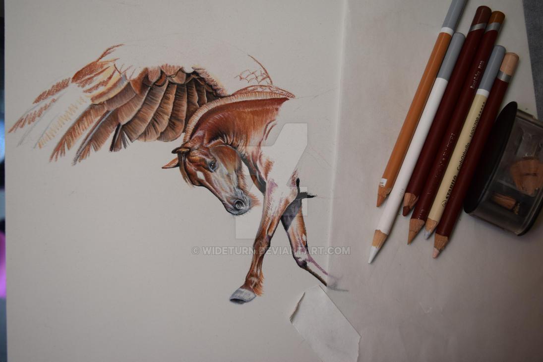 Pegasus Pony WIP by wideturn