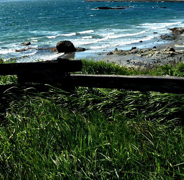 The Fence by Alyvana