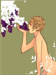 Grapeviiiine by SachiXhappiness