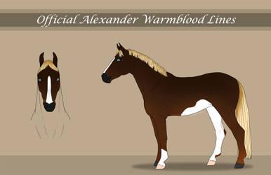 MYO Alexander Warmblood Import