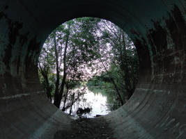 Tunnel to nature - Stock 01