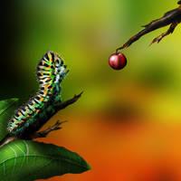 Catterpillar by MyBurningEyes