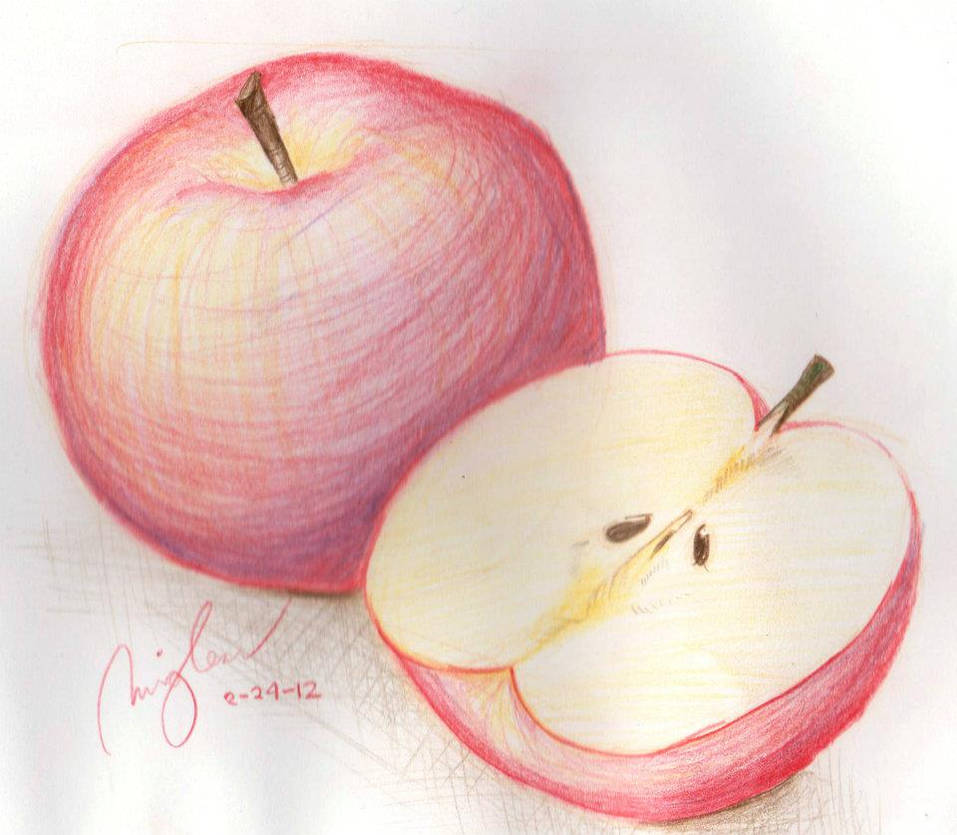 Apple sketch made of colored pencil by ialexies on deviantart